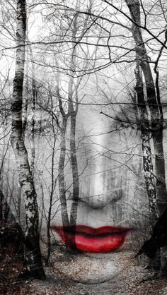 """The face in the forest ""Photography Gabi Hampe"