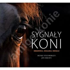 Sygnały koni - obserwuj, analizuj, działaj / autorzy Menke Steenbergen, Jan Hulsen
