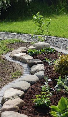 Garden borders add an important landscape touch. Find 37 practical, affordable and good looking landscape garden edging ideas to compliment your lawn and landscaping to give your flower bed borders more impact - [SEE MORE] Lawn And Landscape, Landscape Edging, Landscape Plans, Garden Landscape Design, Lawn Edging, Garden Edging, Garden Borders, Landscaping With Rocks, Front Yard Landscaping