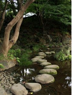 La sensibilidad al tratar espacios naturales. Roberto Aneiros C.