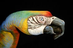 parrot painted on a hand by Guido Daniele