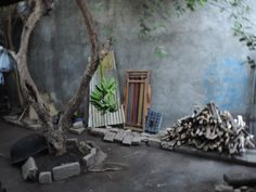 Bananenstaude im Hinterhof
