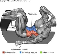 ABDOMINALS - OBLIQUE CRUNCH LEGS ON FLAT BENCH