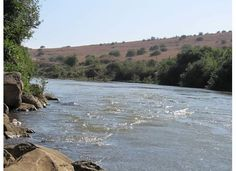 On this spot in the Jordan River, Naaman dipped himself 7 times and was cleansed of his leprosy (story in 2 Kings 5)