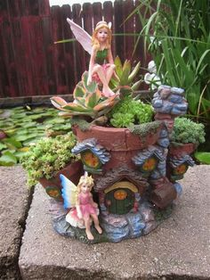 Succulents and fairies...