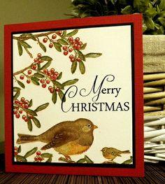 kerst-roodborstje stampinback.nl   KIT 142