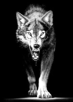 New Ideas For Tattoo Wolf Angry Werewolves - New . - New Ideas for Tattoo Wolf Angry Werewolves – New Ideas for Tattoo Wolf Angry Werewolves – # for Wolf Tattoo Design, Wolf Spirit, Spirit Animal, Wolf Angry, Wolf Tattoo Sleeve, Tattoo Wolf, Wolf Tattoos For Men, Wolf Tattoo Back, Wolf Craft