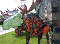 Moosefest Photo - Just Your Garden-Variety Moose - © 2009 Kim Knox Beckius