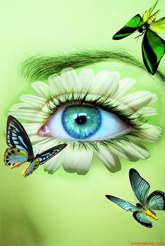 Beautiful And Incredible Eyes Art Pretty Eyes, Cool Eyes, Beautiful Eyes, Amazing Eyes, Beautiful Things, Butterfly Eyes, Butterflies, Green Butterfly, Butterfly Kisses