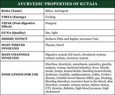 Kutaja is a very powerful Ayurvedic herb commonly used to treat parasitic infection, diarrhea, Candida overgrowth, inflammatory bowel issues, and malabsorption. Keep reading to discover all of Kutaja's healing potentials and the best ways to use it! Ayurvedic Herbs, Ayurvedic Medicine, Ayurveda, Candida Overgrowth, Circulatory System, Crohns, Healing, Therapy, Recovery