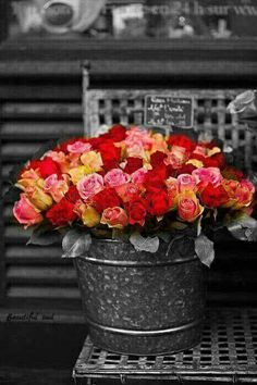 Flower Shop Roses Indoor/Outdoor Gallery-Wrapped Canvas by West of the Wind Basket Flower Arrangements, Beautiful Flower Arrangements, Flower Vases, Floral Arrangements, Splash Photography, Color Photography, Color Splash, Red Colour, Beautiful Roses