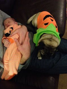 Baby girl and pug tired from handing out candy