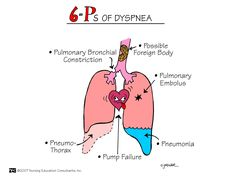 Six Ps of Dyspnea Most cases of shortness of breath are due to heart or lung conditions. Your heart and lungs are involved in transporting oxygen to your tissues and removing carbon dioxide, and problems with either of these processes affect your breathing.