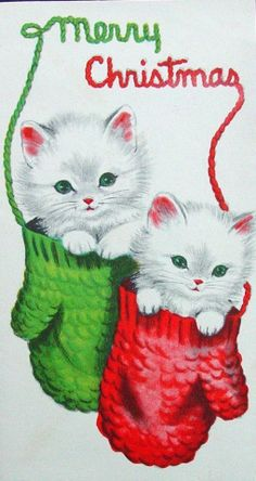Vintage Christmas Card - two fluffy white kittens tucked into mittens. Words Merry Christmas written in yarn Cat Christmas Cards, Old Time Christmas, Christmas Kitten, Old Fashioned Christmas, Christmas Animals, Christmas Greetings, Christmas Holidays, Happy Holidays, Vintage Christmas Images