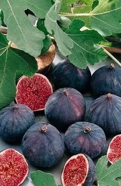 Organic Supplements from Figs freshsupplements. Fruit And Veg, Fruits And Vegetables, Fresh Fruit, Fresh Figs, Colorful Fruit, Tropical Fruits, Organic Supplements, Fruit Photography, Beautiful Fruits