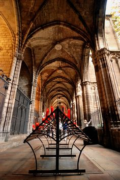 the cloister, the cathedral - Barcelona,  Catalonia