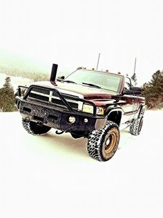 D B Acdf F F Bd on Dodge Dakota Custom Hoods
