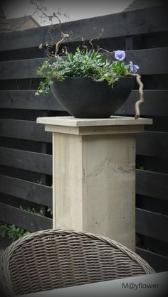 Love the pot, and the fence planks landscape is just so much more contemporary Outdoor Flowers, Outdoor Planters, Outdoor Gardens, Raised Planter, Planter Pots, May Flowers, Garden Structures, Balcony Garden, Garden Projects