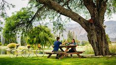 Descubre el paraíso de la #gastronomia y el #vino. Combina el disfrute del arte culinario y los mejores #vinos locales, con un #viaje de placer, conociendo destinos como #Salta, #Mendoza, #BuenosAires y #SantiagoDeChile y alrededores. Encuentra la #experiencia perfecta para ti; viaja ¡pruébalo todo! #amantesDelVino #experienciasGastronomicas #experiencias #viajes #destinos #Sudamerica #bodegas #viñedos Mendoza, Andes Mountains, Mountain Range, Culinary Arts, Fruit Trees, Vineyard, River, Explore, World