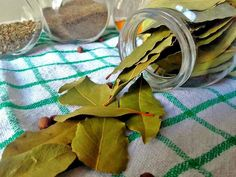 Bay Leaves – Alternative Medicine for Lowering Cholesterol – Tajba English – Bali Raw Almond Milk Cholesterol Lowering Foods, Cholesterol Levels, Degenerative Disease, Body Cells, How To Make Drinks, Bay Leaves, Alternative Medicine, Kraut, Diy Home