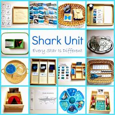Montessori-inspired shark themed learning activities and free printables for kids. Shark Activities, Animal Activities, Kids Learning Activities, Montessori Activities, Preschool Science, Preschool Lessons, Fun Learning, Language Activities, Preschool Ideas