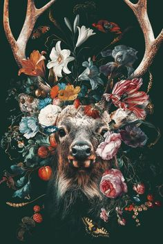 poster of the head of a deer surrounded by colorful flowers. - poster of the head of a deer surrounded by colorful flowers. Most Beautiful Animals, Beautiful Creatures, Animal Wallpaper, Lion Wallpaper, Pretty Wallpapers, Nature Pictures, Animal Pictures, Animal Paintings, Pet Portraits