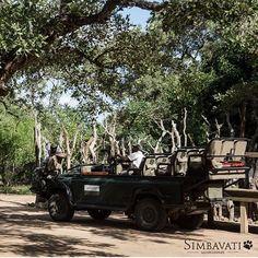Live a life of adventure at Simbavati Safari Lodges. River Lodge, African Safari, Lodges, Wilderness, Wildlife, Adventure, Live, Instagram, Cabins