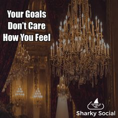 Sharky Social's Guide to Social Media for Small Business Best Social Media Sites, Power Of Social Media, Here's The Thing, New Laptops, Care About You, Management Tips, Don't Care, Teeth, How To Become