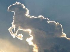 Horse Cloud Formation - Crystalinks