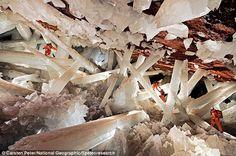 La grotte aux cristaux de Naïca (Mexique) Situé dans l'Etat mexicain de Chihuahua, Naïca est un petit village consacré à l'exploitation minière. Le 4 décembre 1999 une galerie à 200m de profondeur traversa une grotte de 40 m sur 20 m contenant des cristaux d'une taille inconnue à ce jour.
