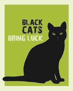 Black Cat....Everything Black by Marla and Marcia Finn on Etsy