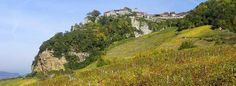 What's the Big Deal About Jura? Many characterful, Old-World wine styles emerge from the Jura but quantities are very limited. Image: Château-Chalon overlooks rows of Savagnin vines © AFP