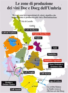 263 Best European Wine Maps WSET images