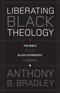 This is a good book on understanding Black Liberation Theology.