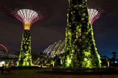 Singapore's Supertrees, Solar-Powered Vertical Gardens