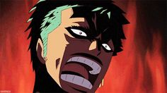 """Zoro scaring Caimie   """"HE'S NOT OUR FRIEND"""""""
