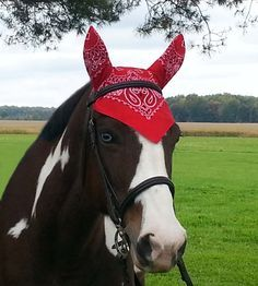 Fun Print Ear ME Now Bonnets in Horse size – Ear Me Now Fly Bonnets for Equines of all sizes