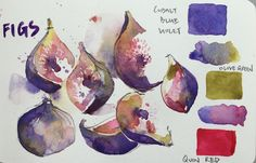 Figs for Tuesday. Painted them before I ate them all. Cobalt blue Violet is one of my all time favourite purple. Use it on its own or mix it with something else.   par PaulArtSG