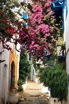 Sidi Bou Saïd, an artists' colony in the hills above Tunis.