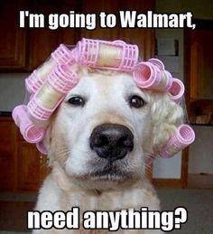 GOING TO WALMART... LOL!!!