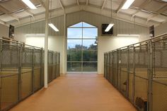 Dog Runs. Our garage sleeping kennels won't connect to the outdoor runs. But I'd like the garage to look like this. Neat, clean, small sleeping kennels along the walls. Epoxied floor and tiled walls for easy cleanup.