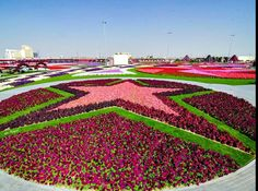 Jardin à Dubaï