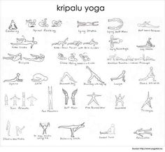 hatha yoga poses  level 1  hatha yoga poses hatha yoga