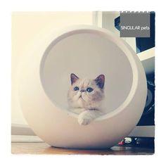 Couchage pour chat contemporain réalisé dans un matériau de qualité à faible impact environnemental. Un design urbain et innovant pour nos intérieurs.