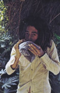 Bob Marley checking the potency of his latest weed harvest