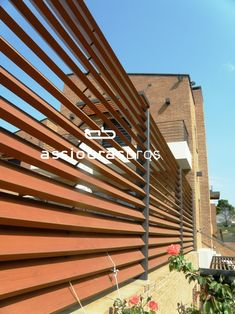 Blinds, Pine, Shades, Texture, Wood, Pine Tree, Surface Finish, Woodwind Instrument, Shades Blinds
