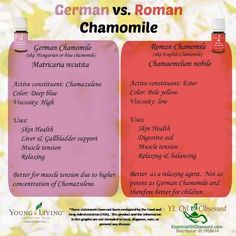 Did you know that Young Living has two different kinds of Chamomile?