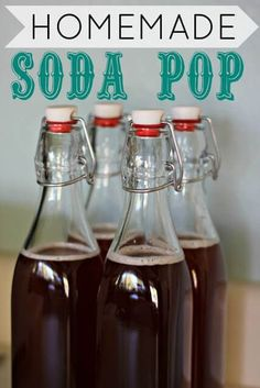 Homemade Soda Pop! -   You guys.  YOU GUYS.  I am SO excited to share this with you today!  This is THE awesomest food creation ever in existence.  Totally not