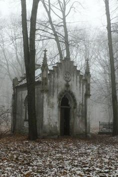 An abandoned, gothic chapel amongst the trees on a cold and misty day...