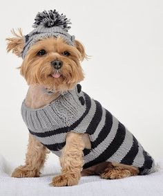 Maxs Closet Gray & Navy Stripe Pet Sweater & Hat | zulily